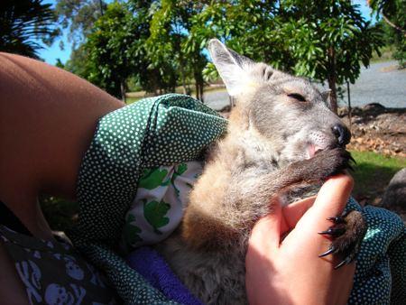 Annika, Australien und das Kangaroo-Baby