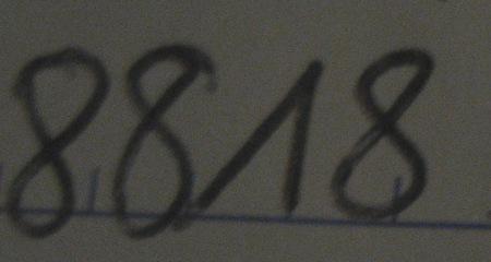 8818.JPG